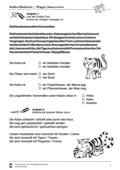 Deutsch_neu, Deutsch, Sekundarstufe II, Primarstufe, Sekundarstufe I, Lesen, Schriftspracherwerb, Erschließung von Texten, Lesekompetenz, Leseverstehen
