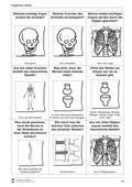 Biologie, Bau und Funktion von Biosystemen, Humanbiologie, Skelett, Körperbau, Knochen