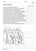 Biologie, Informationsverarbeitung in Lebewesen, Bau und Funktion von Biosystemen, Humanbiologie, Sinnwahrnehmung, Sinnesorgane, Haut
