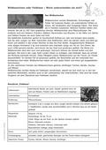 Deutsch, Deutsch_neu, Lesen, Literatur, Themenfelder, Grundwortschatz, Primarstufe, Sekundarstufe I, Sekundarstufe II, Schriftspracherwerb, Non-Fiktionale Texte, Umgang mit fiktionalen Texten, Tiere, Leseförderung, Analyse fiktionaler Texte, Erschließung von Texten