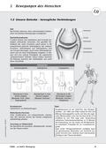 Biologie, Bau und Funktion von Biosystemen, Skelett, Humanbiologie, Körperbau, Gelenke, röntgenstrahlen