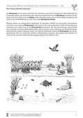 Biologie, Interaktion von Organismus und Umwelt, Biosysteme im Stoff- und Energiefluss, Kreislauf, Ökosystem