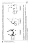 arbeitsblätter, humanbiologie