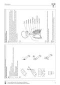 Biologie, Bau und Funktion von Biosystemen, Biosysteme im Stoff- und Energiefluss, Humanbiologie, Sauerstoff, Atmung