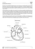 Biologie, Bau und Funktion von Biosystemen, Humanbiologie, Organ, Blut, Herz, Blutkreislauf