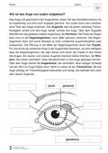 Biologie, Informationsverarbeitung in Lebewesen, Bau und Funktion von Biosystemen, Sinnwahrnehmung, Humanbiologie, Organ, humanbiologie