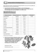 Erdkunde, Länderkunde, Wirtschaft, Naturbedingungen und -ereignisse, Kontinente, Afrika, Landwirtschaft, Flora und Fauna, Handel, Export, Kakao