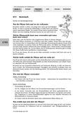 Biologie, Ordnungsprinzipien für Lebewesen, Bestimmen, Pflanzen, Botanik