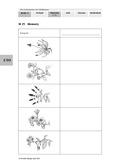 Biologie, Ordnungsprinzipien für Lebewesen, Bestimmen, Pflanze, Botanik