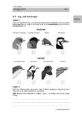 Biologie, Ordnungsprinzipien für Lebewesen, Interaktion von Organismus und Umwelt, Zoologie, Verhaltensbiologie, Wirbeltiere