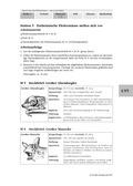 Biologie, Interaktion von Organismus und Umwelt, Gefährdung, fledermaus