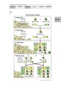 Biologie, Entstehung und Entwicklung von Lebewesen, Genetik, klassische Genetik, Mendel