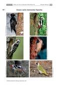 Biologie, Ordnungsprinzipien für Lebewesen, Biosysteme im Stoff- und Energiefluss, Interaktion von Organismus und Umwelt, Zoologie, Ökosystem, Ökologie, Wirbeltiere, pflanze