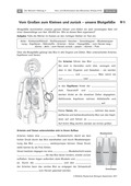 Biologie, Entstehung und Entwicklung von Lebewesen, Interaktion von Organismus und Umwelt, Bau und Funktion von Biosystemen, Erkrankung, Humanbiologie, Kreislauf, Krankheiten, Organ, Herz, mensch