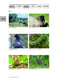 Biologie, Interaktion von Organismus und Umwelt, Bau und Funktion von Biosystemen, Lebensraum, Tier, Heide, Heidschnucke