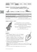 Biologie, Interaktion von Organismus und Umwelt, Kreislauf, Ökologie, pflanze