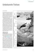 Biologie, Interaktion von Organismus und Umwelt, Ökologie, abiotische Faktoren, ökosystem
