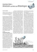 Biologie, Biosysteme im Stoff- und Energiefluss, Ernährung, Nahrung, ameise, schmetterlinge