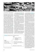 Biologie, Biosysteme im Stoff- und Energiefluss, Ökosystem, Insekten, Holz