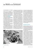 Biologie, Interaktion von Organismus und Umwelt, Lebensraum, Wald, Baumschicht, Strauchschicht, Krautschicht