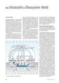 Biologie, Interaktion von Organismus und Umwelt, Biosysteme im Stoff- und Energiefluss, Lebensraum, Ökosystem, Wald, stickstoff