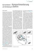 Biologie, Informationsverarbeitung in Lebewesen, Humanbiologie, Drogen, Gehirn, neuronen, lsd
