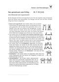 Sport, soziale Fähigkeiten, Fitness, Partner, Kraft, Ausdauer, Gruppe, Gleichgewicht