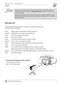 Französisch, Grammatik, Didaktik, Lernzielkontrollen, Satzlehre, Übersetzungen, Fragesätze, Didaktik