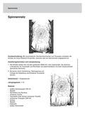 Kunst, Material, Papiere und Pappen, linien, Collage
