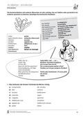 Französisch, Themen, Didaktik, Medien, Lernzielkontrollen, Telefon, Didaktik, Textsorten, Dialog