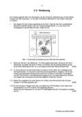 Biologie, Biosysteme im Stoff- und Energiefluss, Stoffwechsel, Verdauung, physiologie, enzymaktivität