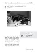 Kunst, Grundlegende Erfahrungsbereiche der Jugendlichen, Räume und Perspektiven einer veränderten Welterfahrung, Jeff Wall, fotografieren