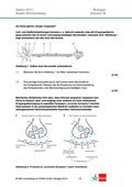 Biologie, Informationsverarbeitung in Lebewesen, Neurobiologie, Synapse, Lernen