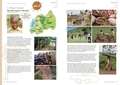 Politik, Internationale Entwicklungen im 21. Jahrhundert, Gesellschafts- und Sozialstruktur, Kulturen, kinder und jugendliche, afrikanische staaten, Gesellschaft