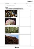 Biologie_neu, Sekundarstufe II, Ökosysteme, Definition und Merkmale von Ökosystemen
