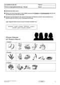 Deutsch, Deutsch_neu, Schreiben, Sprache, Primarstufe, Sekundarstufe II, Sekundarstufe I, Schreibprozesse initiieren, Sprachbewusstsein, Schreibverfahren, Pragmatisches Schreiben, Beschreiben