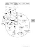Biologie, Bau und Funktion von Biosystemen, Entstehung und Entwicklung von Lebewesen, Tier, Insekten