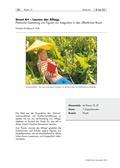 Kunst_neu, Sekundarstufe II, Körperhaft-räumliches Gestalten, Kunstbegegnung und -betrachtung, Plastik, Skulptur und Objekt, Analyse und Interpretation von Plastiken, Formstruktur der Plastik, Street Art