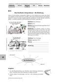 Deutsch_neu, Sekundarstufe I, Sprechen und Zuhören, Schreiben, Literatur, Informieren, Schreibverfahren, Grundlagen, Prozessorientiertes Schreiben, Berichten, Beschreiben und Schildern, Pragmatisches Schreiben, Verfahren der Textinterpretation, Planen von Texten, Beschreiben, Einleitung, Beispielanleitung, Hilfreiche Fragen, Formulierungen für die Beschreibungen, Formulierungshilfen, Bildelemente, Wirkung einer Karikatur