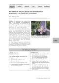 Biologie_neu, Sekundarstufe I, Pflanzen, Samenpflanzen, Blütenpflanze, Kreuzblütler, Grundbau, Früchte