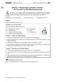 Chemie_neu, Sekundarstufe I, Chemie im Alltag, Dünge-, Wasch- und Reinigungsmittel, Seifen, optische Aufheller, Oberflächenspannung, Enzyme, Bleichmittel, Tenside