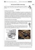 Biologie_neu, Sekundarstufe I, Tiere, Pflanzen, Wirbellose Tiere, Samenpflanzen, Skelettfraß, Lochfraß, Fensterfraß, Tausendfüßler, Bodentiere