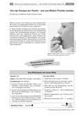Biologie_neu, Sekundarstufe I, Pflanzen, Samenpflanzen, Bedeutung der Samenpflanzen für den Menschen und die Natur, Kelchblatt, Kronblatt, Staubblatt, Fruchtknoten, Rezepte, Laufspiel