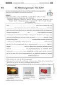 Chemie_neu, Sekundarstufe I, Allgemeine Chemie, Umwandlung von Stoffen, Endo- und exotherme Reaktionen, endotherme Reaktion, exotherme Reaktion, Wärmeenergie, Reaktionsverlauf