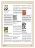 Kunst_neu, Sekundarstufe I, Körperhaft-räumliches Gestalten, Relief, Gestalten mit Papier oder Karton, Papier, Falten, Technik