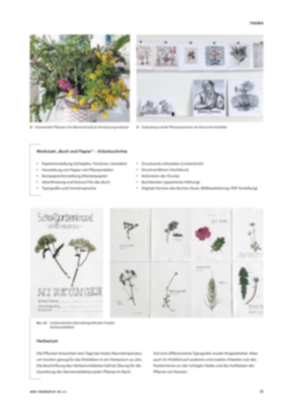Pflanzen auf der Sommerwiese - Ein Buchprojekt mit Kindern und Jugendlichen Preview 2