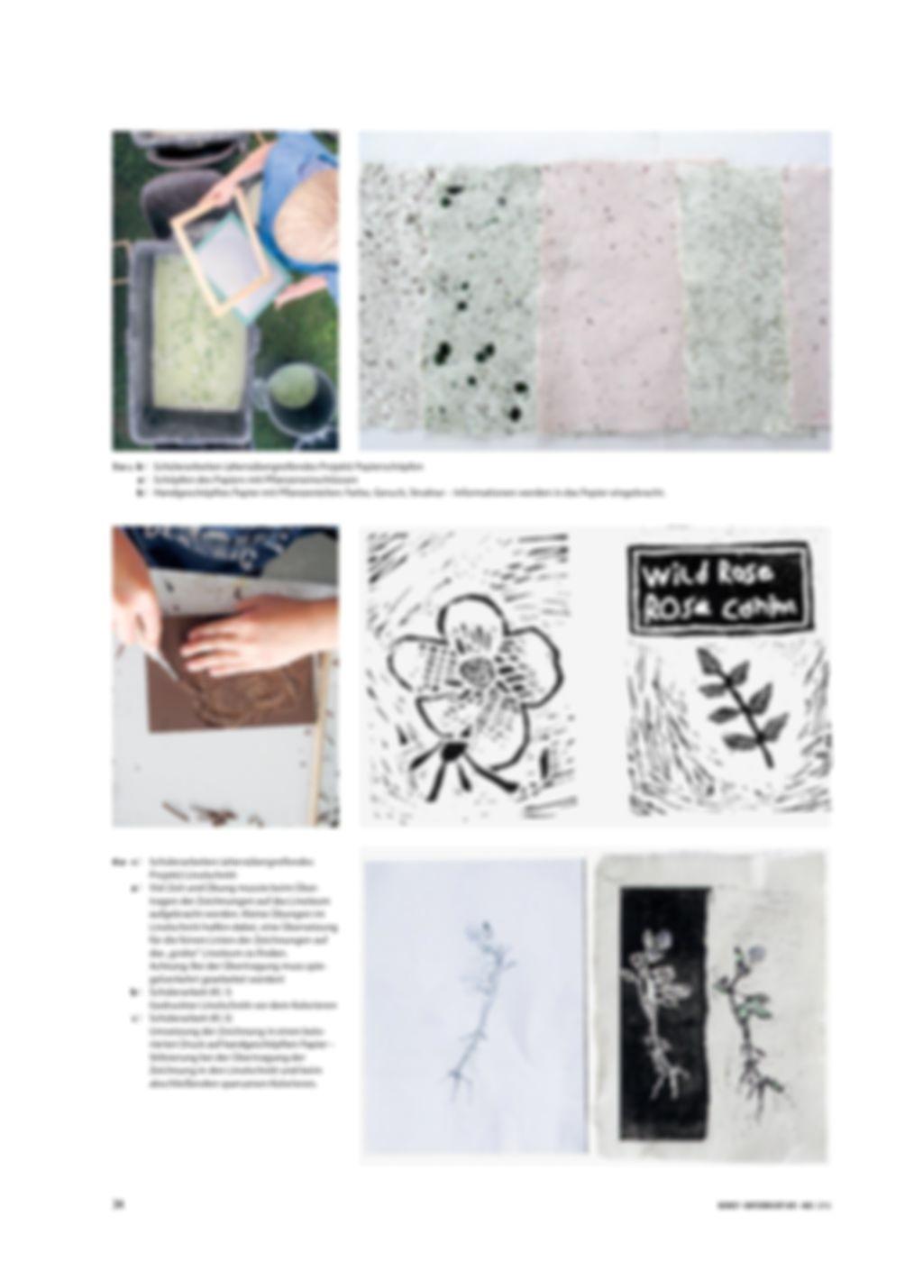 Pflanzen auf der Sommerwiese - Ein Buchprojekt mit Kindern und Jugendlichen Preview 3