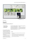 Kunst_neu, Sekundarstufe I, Flächiges Gestalten, Zeichnen, Grafische Elemente, Grafik, Strukturen, komprimieren, zuspitzen, Kunst