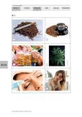 Biologie_neu, Sekundarstufe II, Der Mensch, Bau und Funktion des Nervensystems, Sucht- und Rauschmittel, Nervenzellen und Synapsen, Formen von Süchten, Stoffgebundene Süchte, Erregungsübertragung an der Synapse, Reizübertragung, Nikotin, Koffein, Alkohol, Botox, Antidepressiva, Hanf, Cannabis, THC