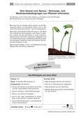 Biologie_neu, Sekundarstufe I, Pflanzen, Samenpflanzen, Hobbygärtner, Schülerexperiment, Lugol'sche Lösung, Skizze beschriften